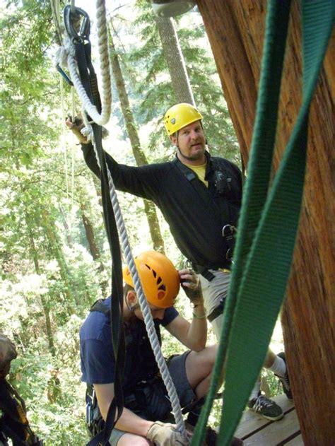 redwood canopy tours    zipline  san francisco