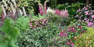Parterre De Plante : parterre de fleurs vivaces pivoine etc ~ Melissatoandfro.com Idées de Décoration