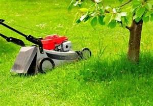 Tondre La Pelouse Sans Ramasser : r ussir tondre la pelouse en toute tranquillit c 39 est possible ~ Melissatoandfro.com Idées de Décoration