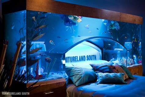 awesome aquarium bed lets  sleep   fishes