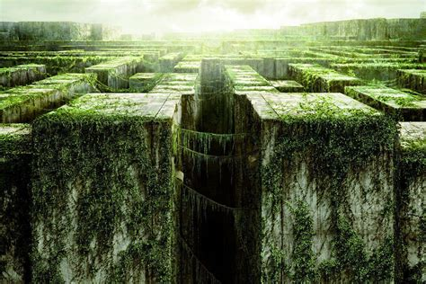 The Maze Runner Wallpapers - Wallpaper Cave