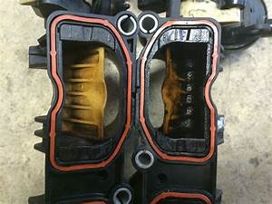 Cel For Intake Manifold Flappers