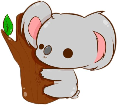 chibi animal koala cute kawaii koala bears kawaii