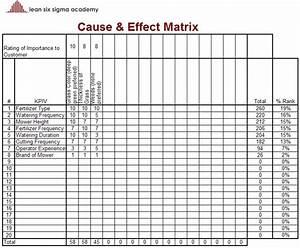 Cause Effect Matrix Template