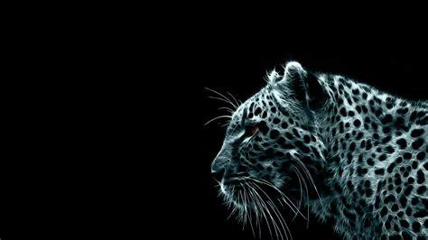 Glowing Animal Wallpaper - glowing cheetah animal wallpaper 437 wallpaper hd