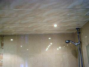 bathroom ceiling cladding ceiling systems With cladding for bathroom ceiling