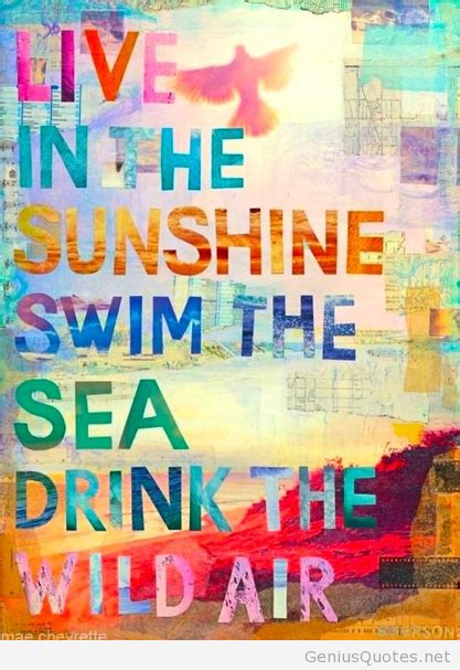 Summer Party Quotes Tumblr