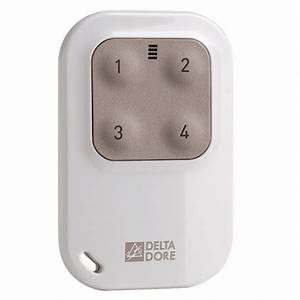 Telecommande Delta Dore : t l commande porte cl 4 touches tyxia 1410 pour ~ Melissatoandfro.com Idées de Décoration