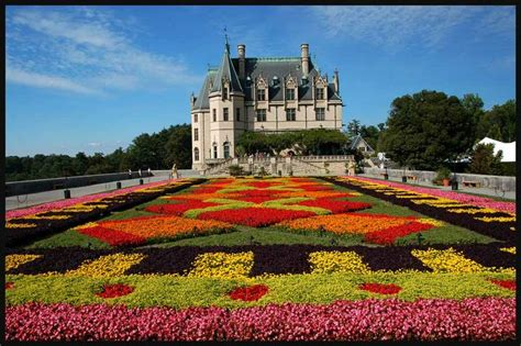biltmore house and garden cultivated plants gardens