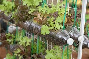 Vertikale Gärten Anlegen : vertikaler garten mit gem se anlegen das gedeiht im ~ Michelbontemps.com Haus und Dekorationen