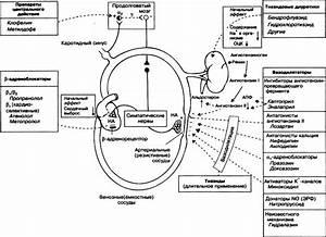 Лечение гипертонии после инсульта
