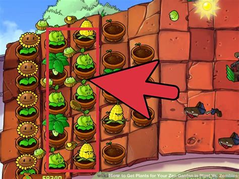 plants vs zombies zen garden how to get plants for your zen garden in plant vs zombies