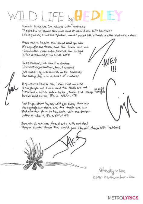 hedleys wild life handwritten lyrics words  meaning