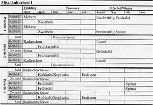 Welche Pflanzen Vertragen Sich Tabelle : mischkultur tipps ~ Lizthompson.info Haus und Dekorationen