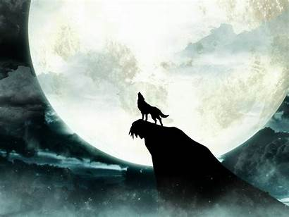 Moon Wolf Howling Background 1080p Pc 2021