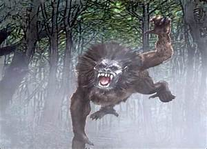 Frontiers of Zoology: Enfield Horror Is Also a FW-Monkey?