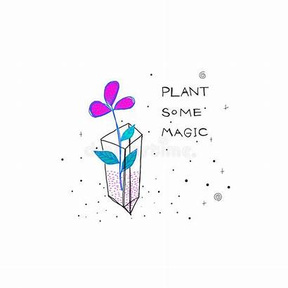 Magic Abstract Vector Trick Sky Plant Flower