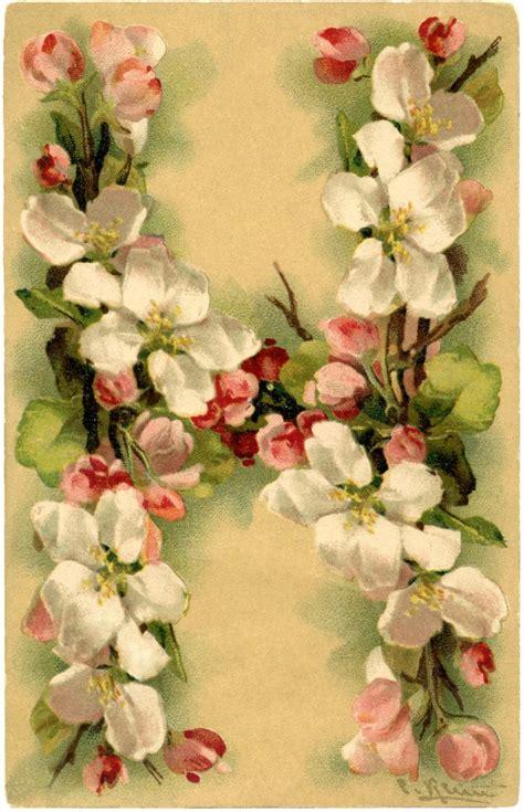 beautiful floral alphabet card   graphics fairy
