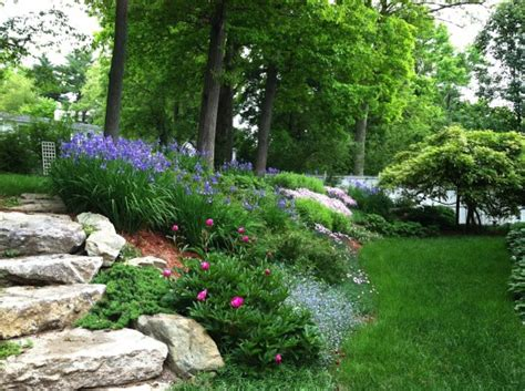 landscaping on a slope a steep slope transformed sally muspratt landscape design