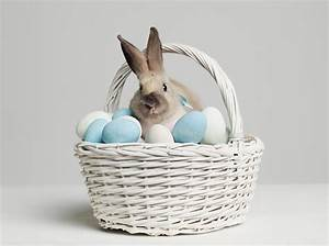 Interesting Facts About Easter Trivia About Easter