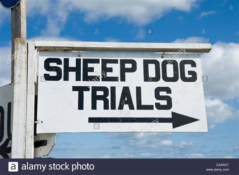 Working Dogs Farm Uk Stock Photos & Working Dogs Farm Uk. Cataract Diagram Form Signs. Seizures Signs Of Stroke. Learn Signs. Mellitus Signs. Pretty Little Liars Character Signs. Golf Signs Of Stroke. Heartworms Signs. Liver Qi Stagnation Signs