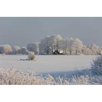 Winter Tartu County Estonia Europe by Jaak Nilson