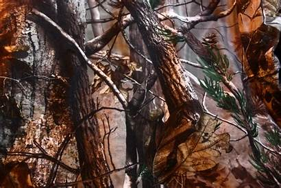 Realtree Wallpapers Camouflage Backgrounds Pixelstalk Camo Background