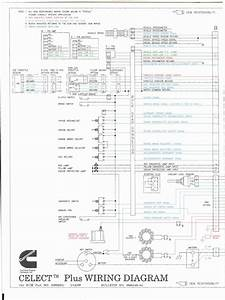 Wiring Diagrams L10 M11 N14