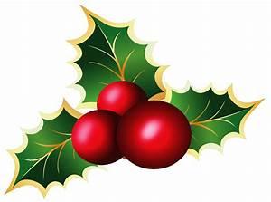 Transparent christmas mistletoe picture clipart ...