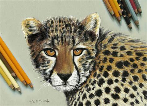 realistic drawings  paintings  animals  jasmina