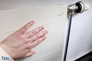 Heizung Rauscht Obwohl Aus : heizungsventil klemmt so wechseln sie das thermostatventil ~ Frokenaadalensverden.com Haus und Dekorationen