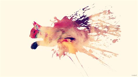 colorful splashes abstract animal cat creative