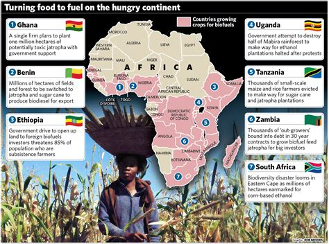 land grabs there is no idle land in africa crossed 783 | africabiofuelslandgrab