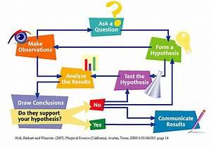 Scientific Method Writing Assignment  Scientific Writing