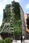 "Travel: Private ""Vegitecture"" Tour of Jardí Tarradellas vertical garden in barcelona"