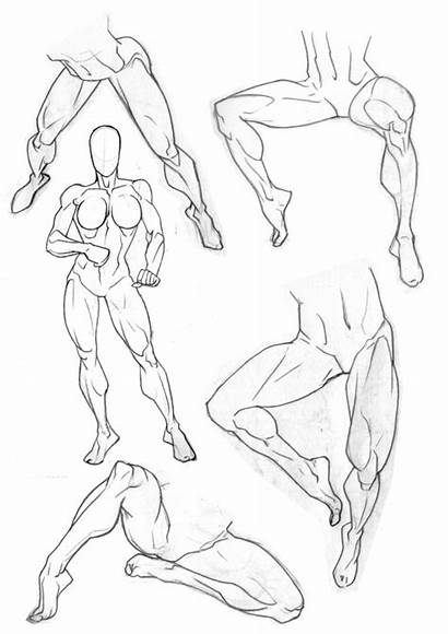Drawing Legs Figure Bambs79 Human Sketchbook Muscular
