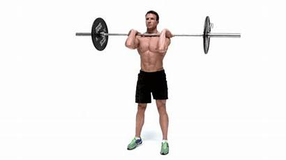 Barbell Squat Muscle Workout Builders Doing Main