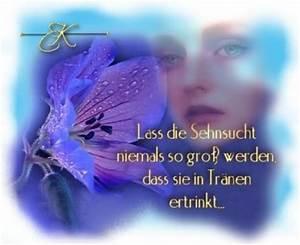 Sehnsucht Bilder Kostenlos : sehnsucht 15696 gb pics gb bilder g stebuchbilder ~ A.2002-acura-tl-radio.info Haus und Dekorationen