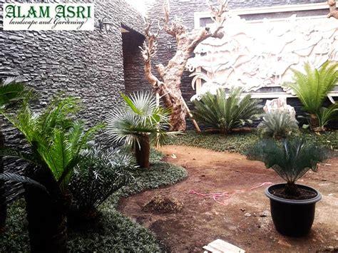 pohon kamboja fosil surabaya jasa pembuatan taman