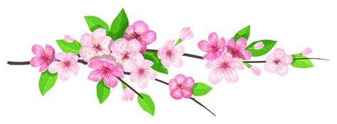 pink spring branch png image gallery yopriceville high quality