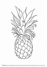 Pineapple Coloring Printable Drawing Fruit Pineapples Fruits Tattoo Template Pdf Colouring Sheets Outline Preschoolers Toddlers Apple Printables Drawings Customize Through sketch template