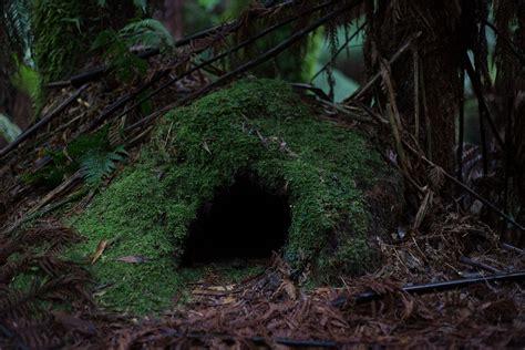 Best Hidden Survival Shelter Choices - Practical Survival Blog