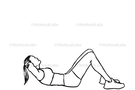 Modified Bicycle Exercise by Crunches Workoutlabs