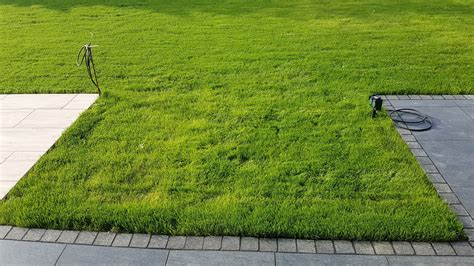 übergang Terrasse Rasen by Terrasse Im Rasen Anlegen Wohn Design