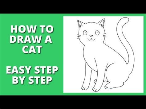 draw  cat step  step  beginners youtube