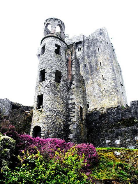 Blarney Castle Ireland Travel Pinterest