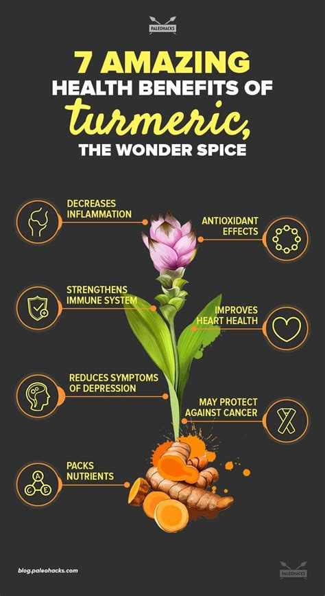 7 Amazing Health Benefits of Turmeric, The Wonder Spice ...