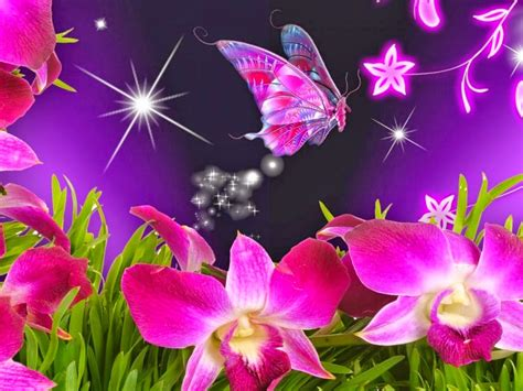 Beautiful Animated Flowers Wallpapers - most beautiful flowers animated wallpapers 8 flower