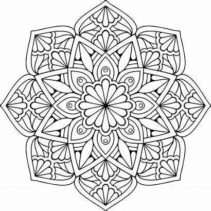 Mandala Vector Floral Coloring Pages Eps Mandalas
