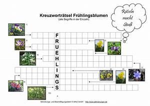 Was Sind Frühlingsblumen : kreuzwortr tsel fr hlingsblumen f r senioren auch mit demenz bilder von den fr hbl hern ~ Whattoseeinmadrid.com Haus und Dekorationen
